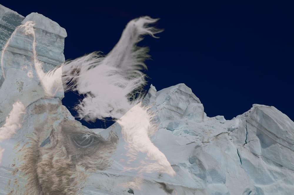 Mountain Resolve 5