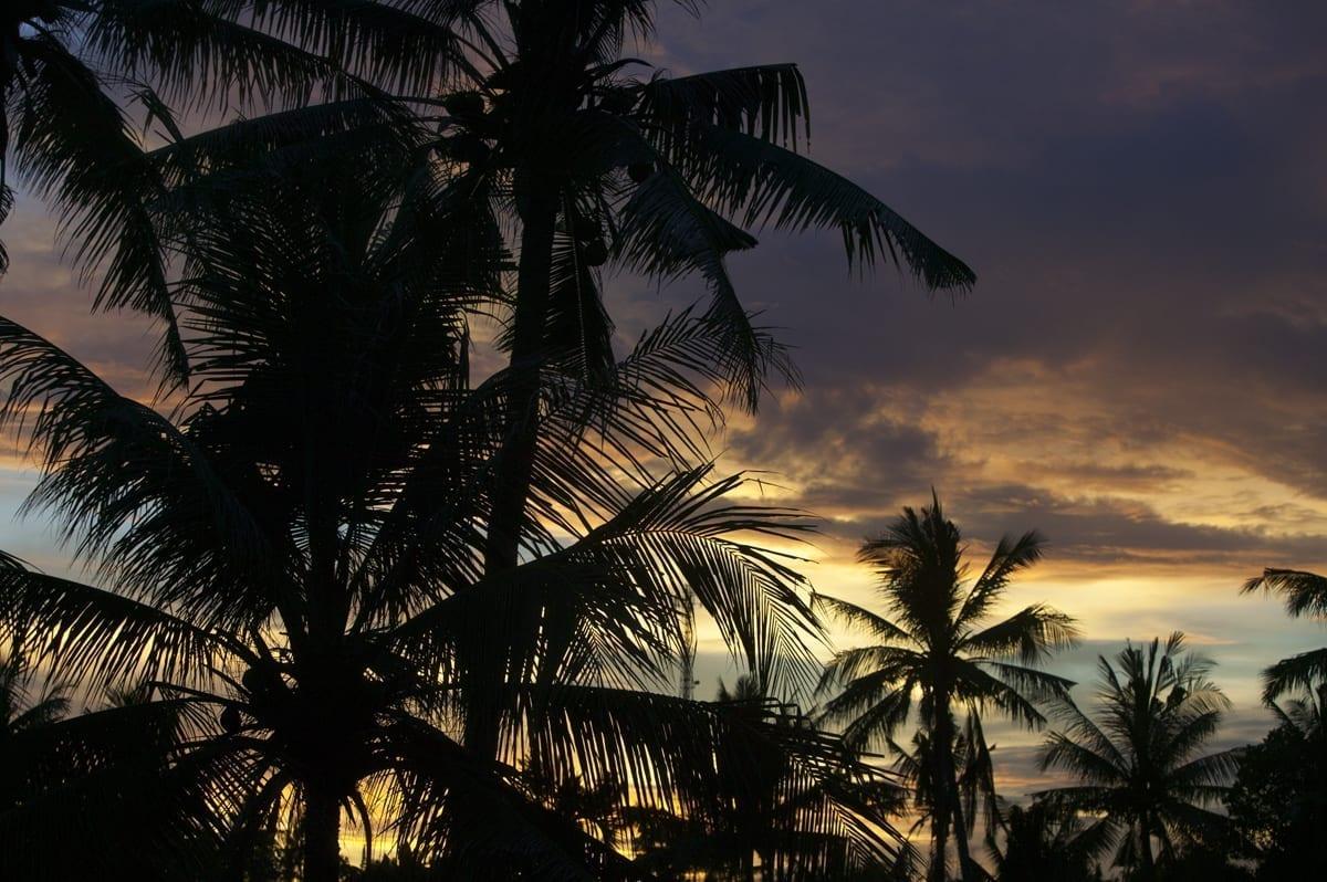 Tropics Resolve 5